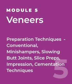 Veneers - Preparation Techniques  - Conventional, Minishampers, Slowing Butt Joints, Slice Preps, Impression, Cementation Techniques