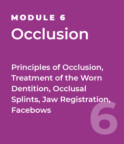 Occlusion - Principles of Occlusion, Treatment of the Worn Dentition, Occlusal Splints, Jaw Registration, Facebows